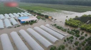 航拍暴雨后的河南安阳:积水漫过高速路 房屋农田被淹