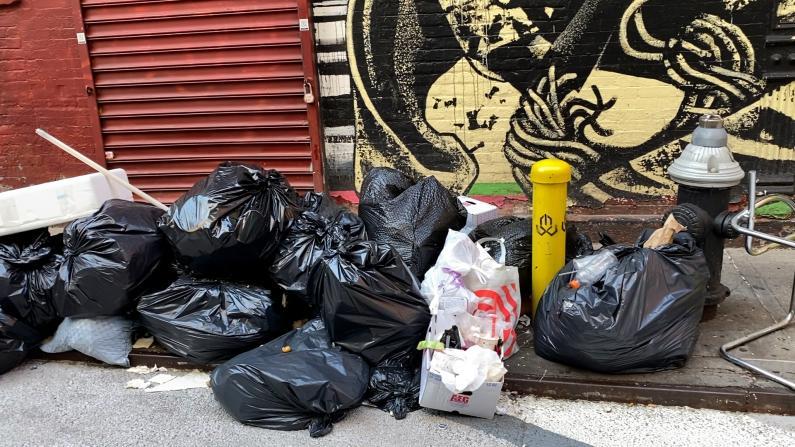 疫期政策变化多 纽约华埠垃圾堆放问题日益严重 谁来负责?
