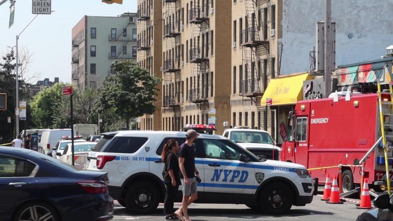 纽约皇后区日本杂货店4级大火 周围店家均遭波及