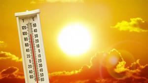 热浪来袭 纽约法拉盛避暑中心无人问津?老人中心分享防暑方法