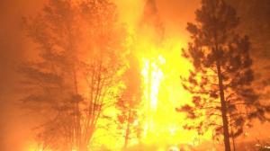 大风加速加州卡尔多山火失控 屋毁人伤数千居民被迫撤离