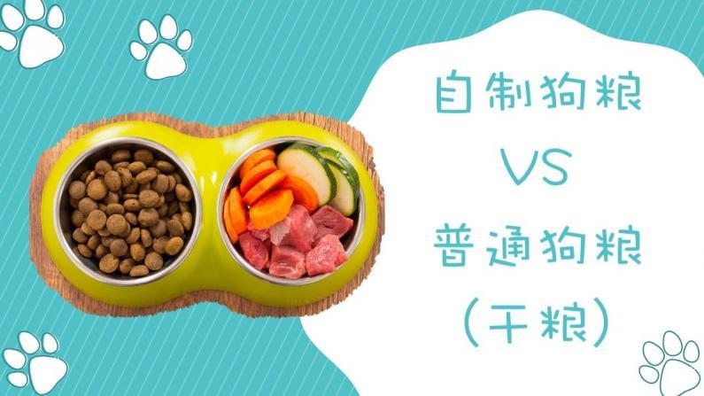 【林小Jim】自制狗粮vs普通狗粮哪一个比较好,怎么选择?