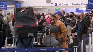 加州游客涌向夏威夷避疫
