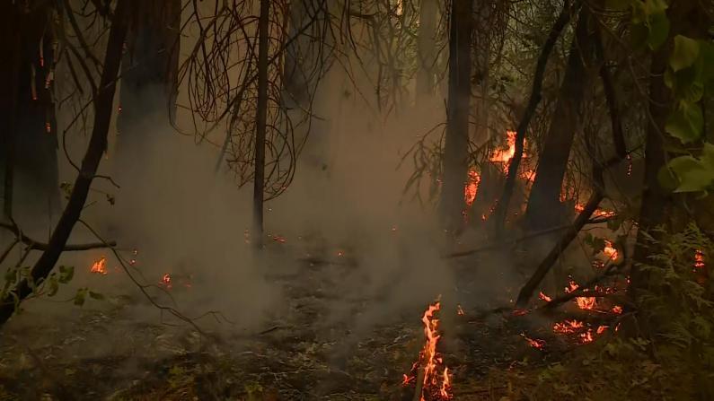"""加州消防""""以火阻火""""防卡尔多山火蔓延 灾民:我只想回家"""