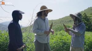 《闪耀的平凡:青春接力》 走进执爱大山的植物学者赵高卷