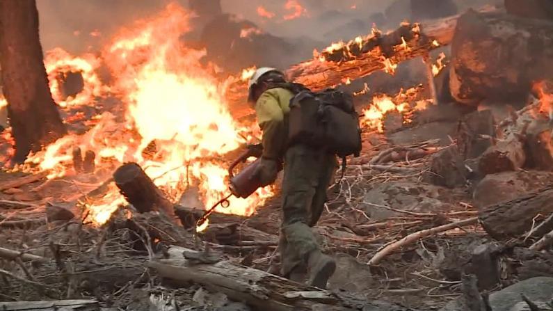 延烧近三周 加州卡尔多野火逼近太浩湖 天气条件终有所好转