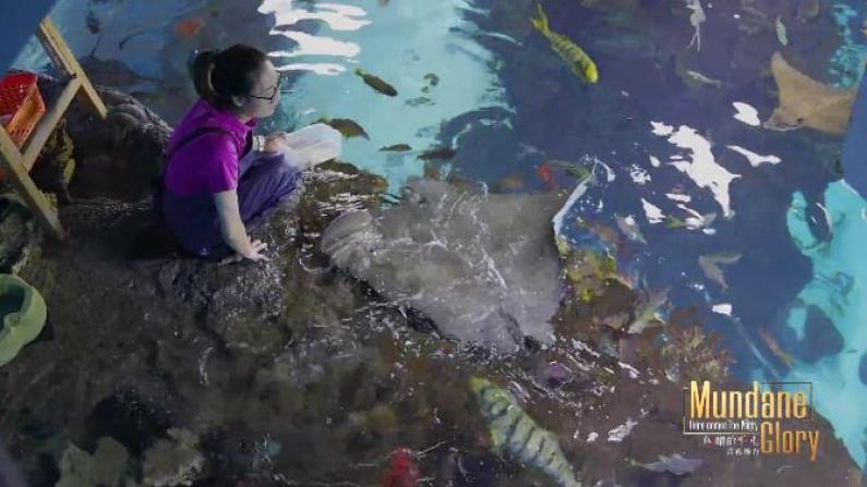 """《闪耀的平凡:青春接力》 对话""""海洋鱼类养殖员""""李福淋"""