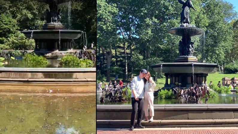 纽约中央公园洪水退去 游人如织