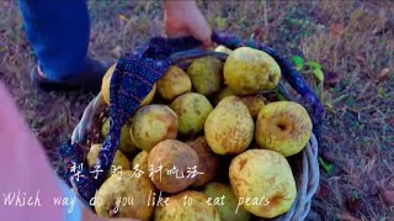 【德州田园生活】梨子的各种吃法你最喜欢哪种?