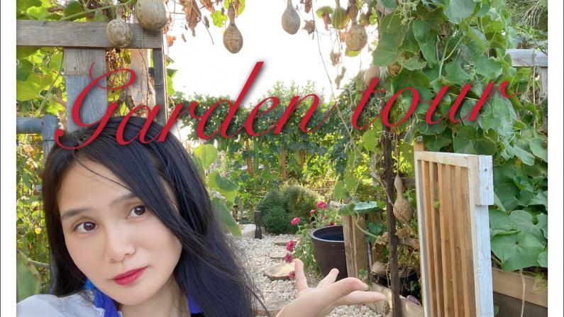 【德州田园生活】一人带仨娃的家庭主妇, 花一年半建了个神仙花园