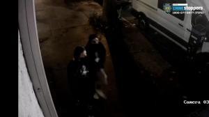雌雄大盗夜闯法拉盛家具店 盗走4万现金被纽约市警通缉