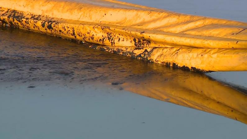 南加州再现大规模原油泄漏 海滩鱼鸟死亡 难闻气味飘散