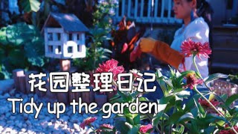 【德州田园生活】日常打理花园 我都做些什么?