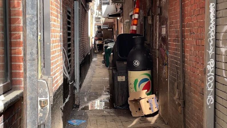 波士顿华埠非法倒垃圾严重 居民吁加大处罚力度提高环卫意识