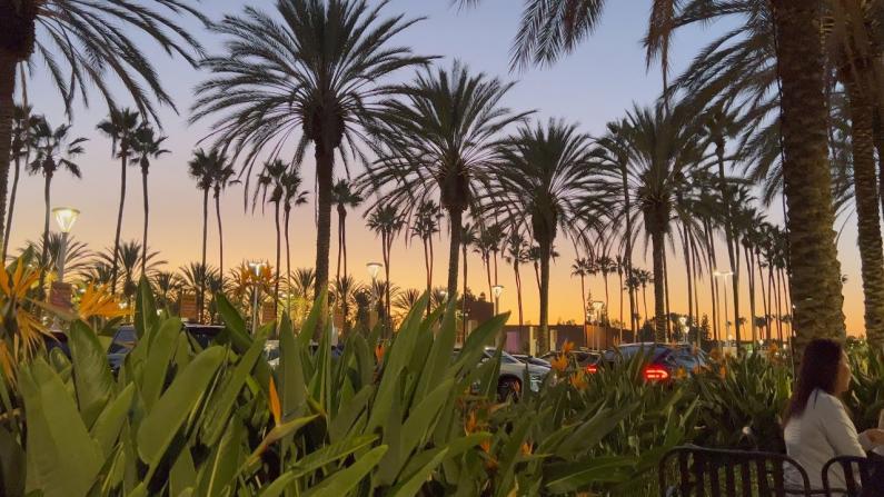 【安家美国·加州尔湾】看看我首支完全用iPhone 13 Pro拍的VLOG