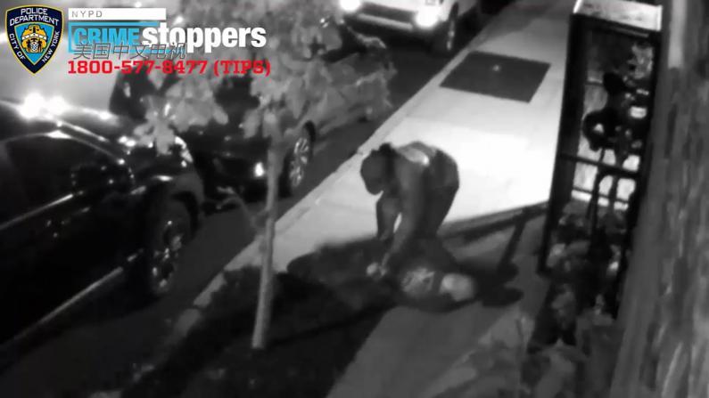 踢倒八旬老人强行抢劫 纽约猖狂劫犯遭通缉